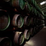 Канарские острова: история виноделия